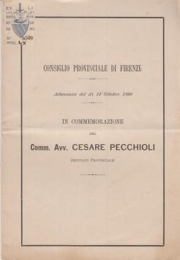 IN COMMEMORAZIONE DEL COMM. CESARE PECCHIOLI DEPUTATO PROVINCIALE. ADUNANZA DEL Dì 14 OTTOBRE 1899