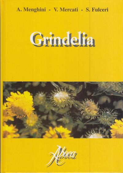 Grindelia - Menghini A. - Mercati V. - Fulceri S.