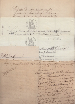 CITAZIONE IN GIUDIZIO E PROTESTO DI PAGAMENTO MANOSCRITTI 1878 DI RANIERO DEL FU GIOVACCHINO GOTTI COMMERCIANTE DI PONTEDERA CONTRO NICCOLÒ BALDASSERRINI DI RIPARBELLA E CONTRO RICCARDO NERI DI COMMERCIANTE DI PECCIOLI