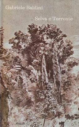 Selva e torrente
