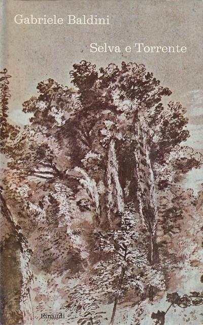 Selva e torrente - Baldini Gabriele