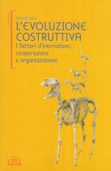 L'evoluzione costruttiva. I fattori d'interazione, cooperazione e organizzazione
