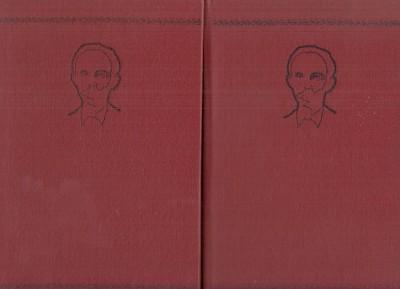 Poesia completa. edicion critica - Jose Marti