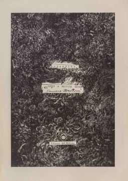 Rosaspina. Brogliaccio di Sandro Martini riprodotto in fac-simile per la favola dei fratelli Grimm ed illustrato con 10 acqueforti tirate sui torchi di Giorgio Upiglio