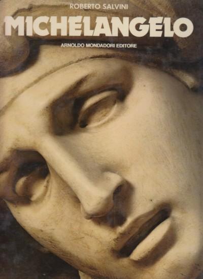 Michelangelo - Salvini Roberto
