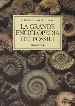 La grande enciclopedia dei fossili