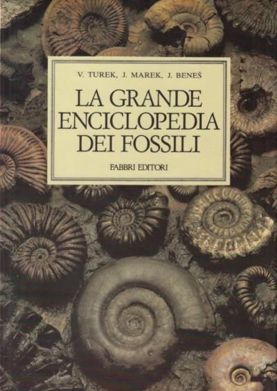 La grande enciclopedia dei fossili - Turek Vojtech - Maarek Jaroslaw - Benes Josef