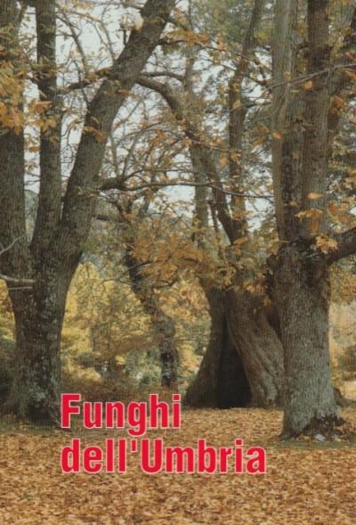 Funghi dell'umbria - Regione Umbria - Gruppo Micologico Ternano